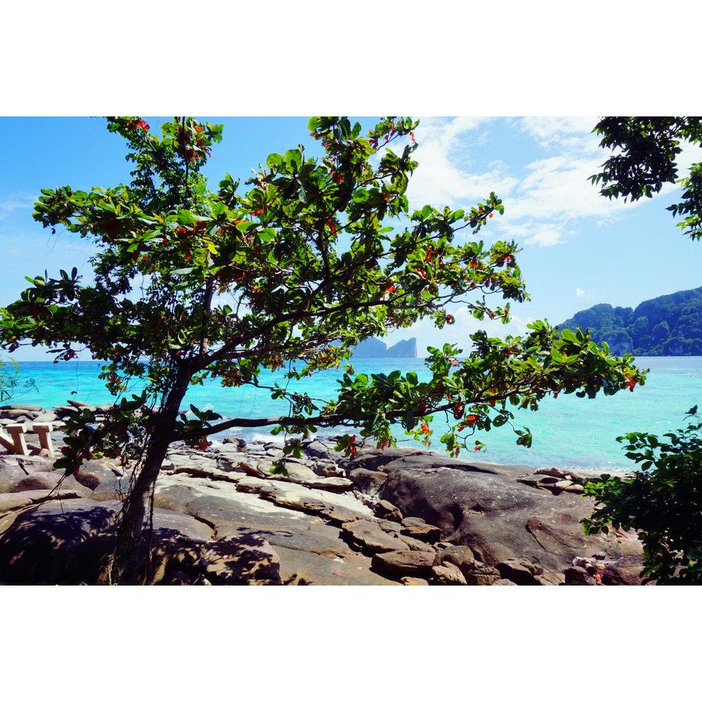 Walk around Phi Phi