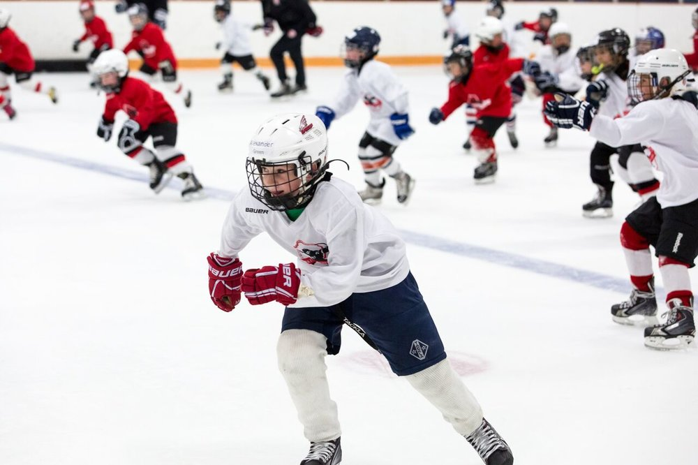 2016 Larkin Hockey School_WM_008.jpg