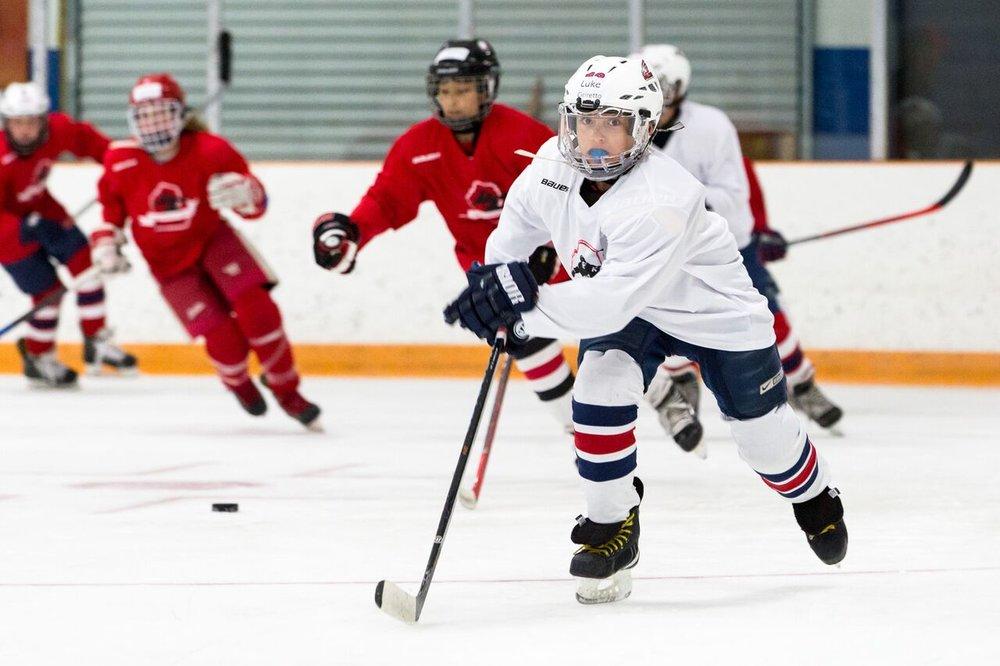 2016 Larkin Hockey School_WM_027.jpg
