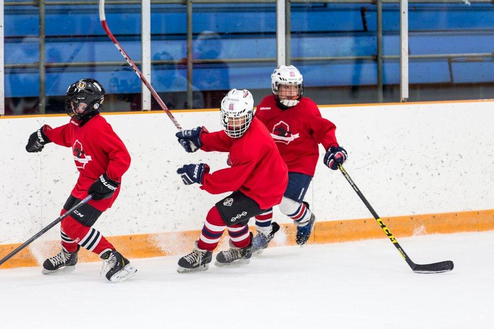 2016 Larkin Hockey School_WM_077.jpg
