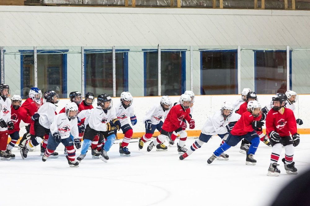 2016 Larkin Hockey School_WM_078.jpg