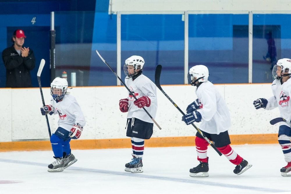 2016 Larkin Hockey School_WM_103.jpg