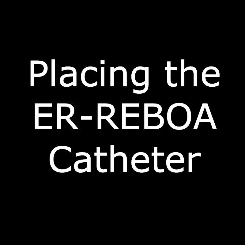 ER-REBOA Catheter.jpg