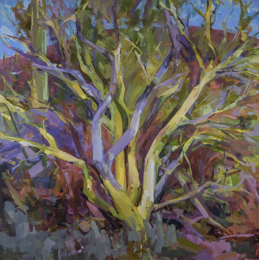 Joe Forkan • Tucson Palo Verde 40 x 40 oil on linen