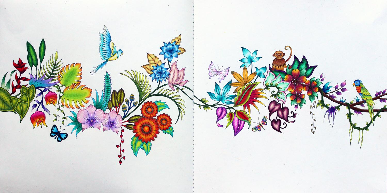 Coloring Magical Jungle By Johanna Basford Emily Illustrator