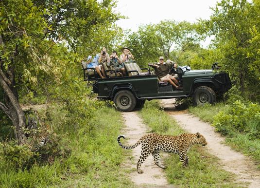 Kruger_leopard_photo.jpg