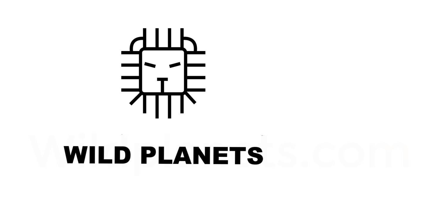 Wild Planets | Sustainable Tourism and Photography
