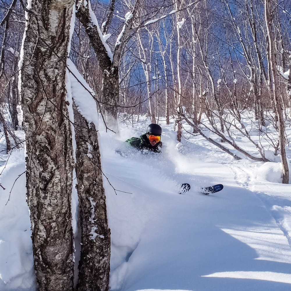 Playing in the trees somewhere in the Hakuba Valley, Japan.