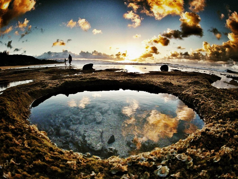 Tide-Pools-at-Rocky-Point-Mexico.jpg