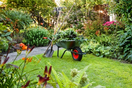 We can remove both organic and inorganic garden waste