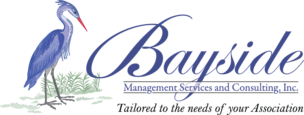 Bayside Management Services and Consulting, Inc.