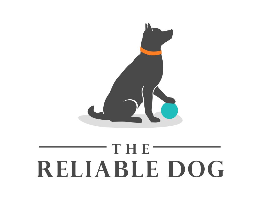 The Reliable Dog | Professional dog trainer | Cape Cod and South Shore, MA