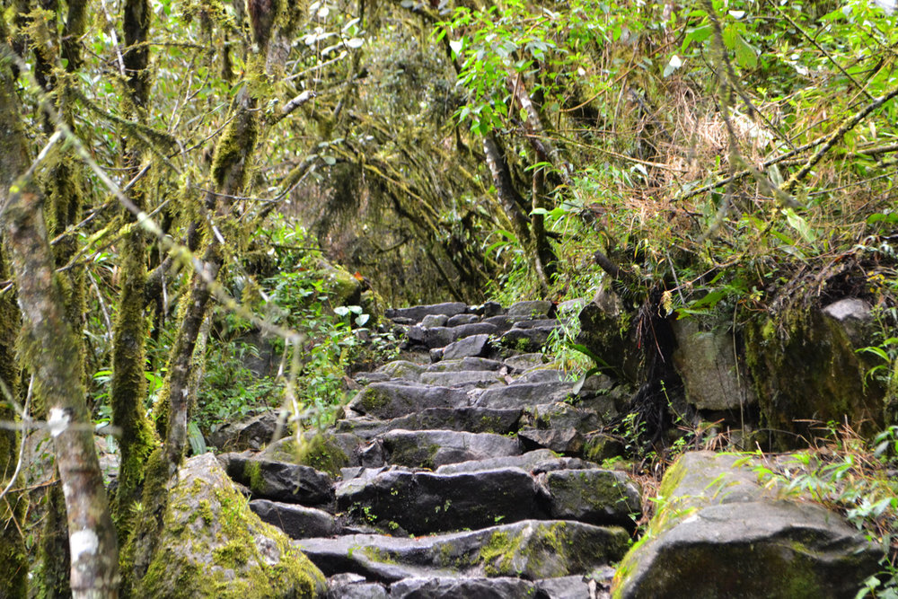 Steps leading to the ruins