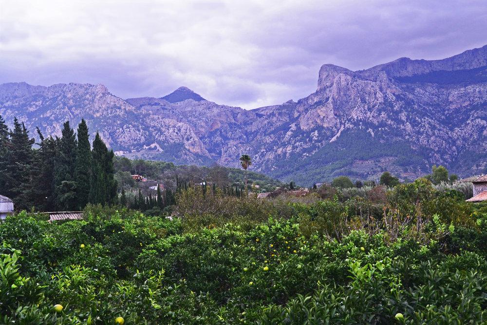 Mountains near Soller