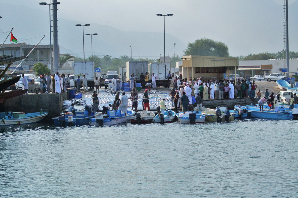Traditional fish market in Oman