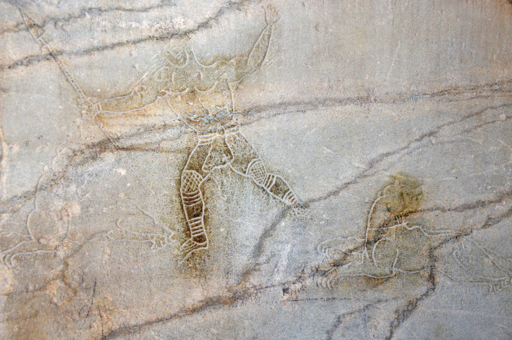 Ancient graffiti on one of the walls of the Colosseum