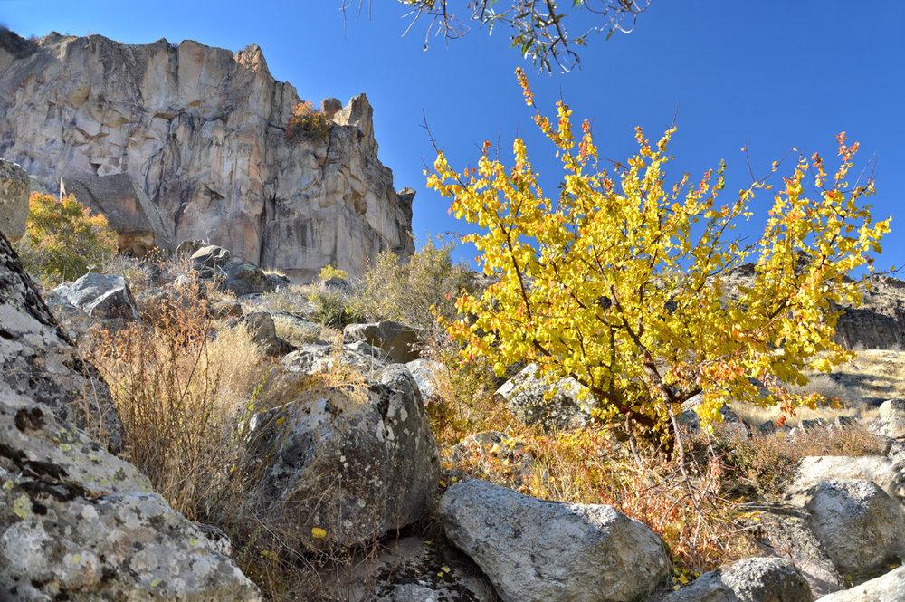 Autumn colors in Cappadocia