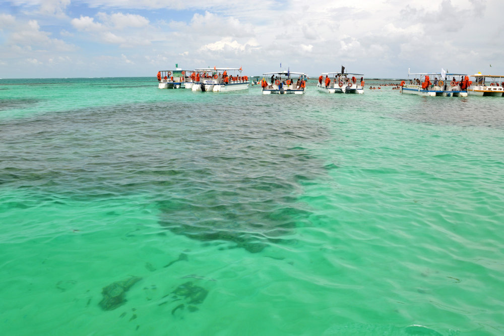 Maragogi Beach, coral reefs