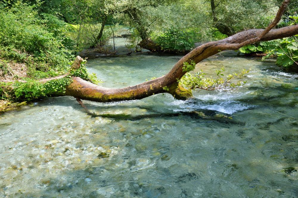 Bistrice river