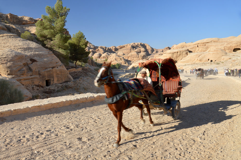 Chariot on the way to Petra