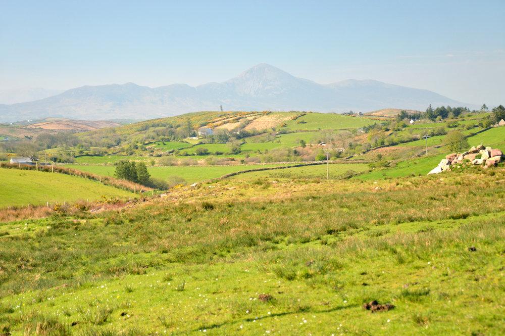 Green Irish landscapes