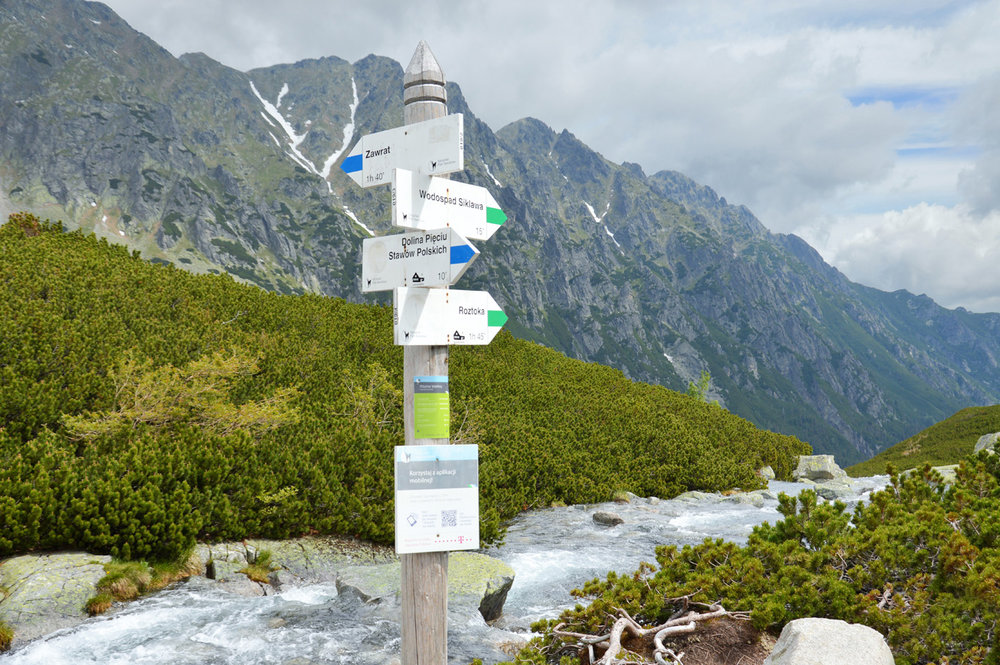 Sign post pointing towards different routs and trails