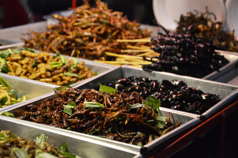 Fried insects for tourists
