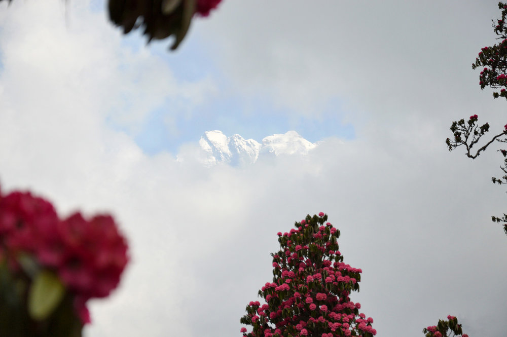 Leaving Ghorepani - it's getting cloudy again