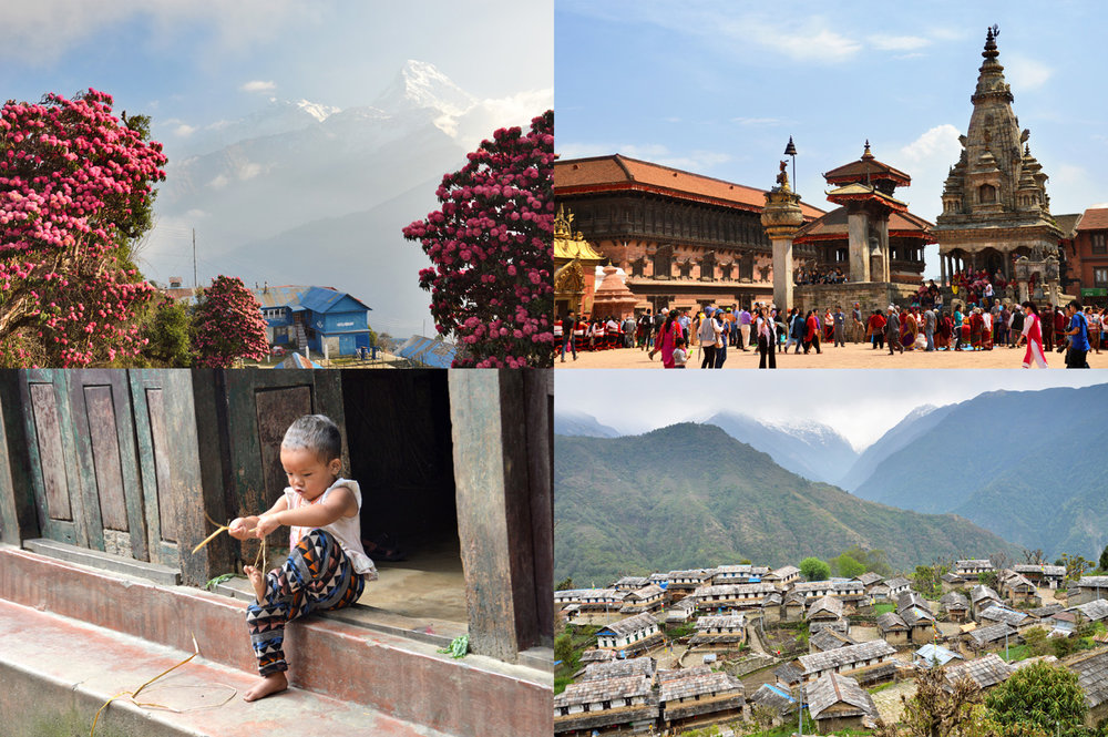 From top left: Rhododendrons at Poon Hill, Bhaktapur Durbar Square, a child in the village of Ulleri, Ghandruk
