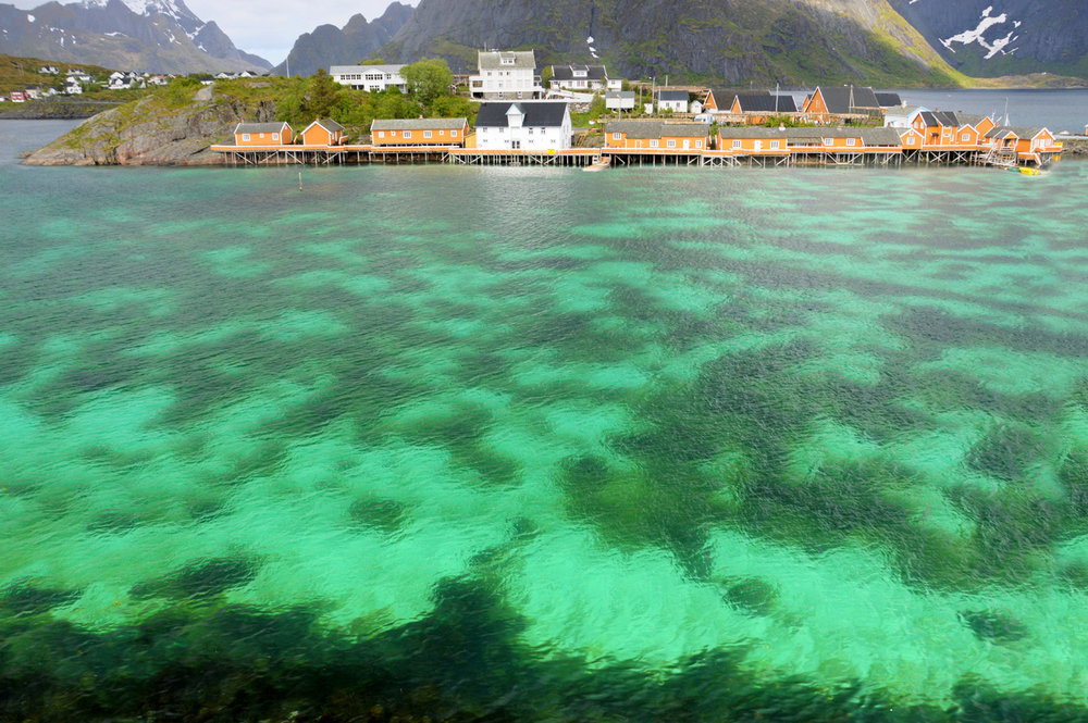 Fishermen Huts in Reine    more info