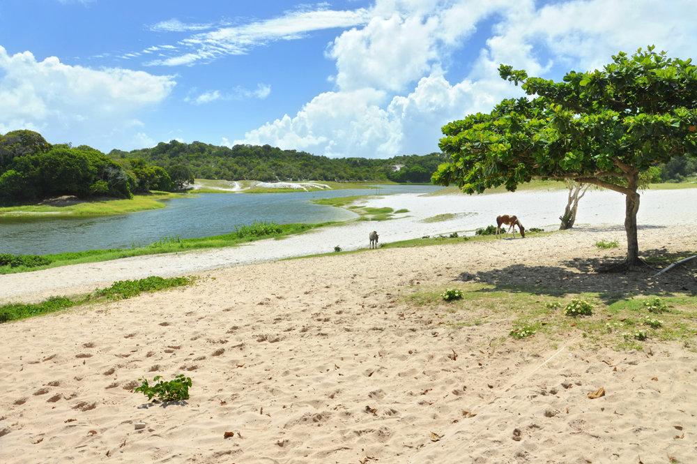 Parque Pitucau