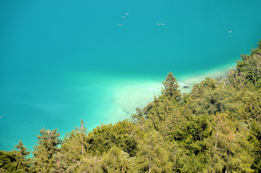 Turquoise waters of Bled