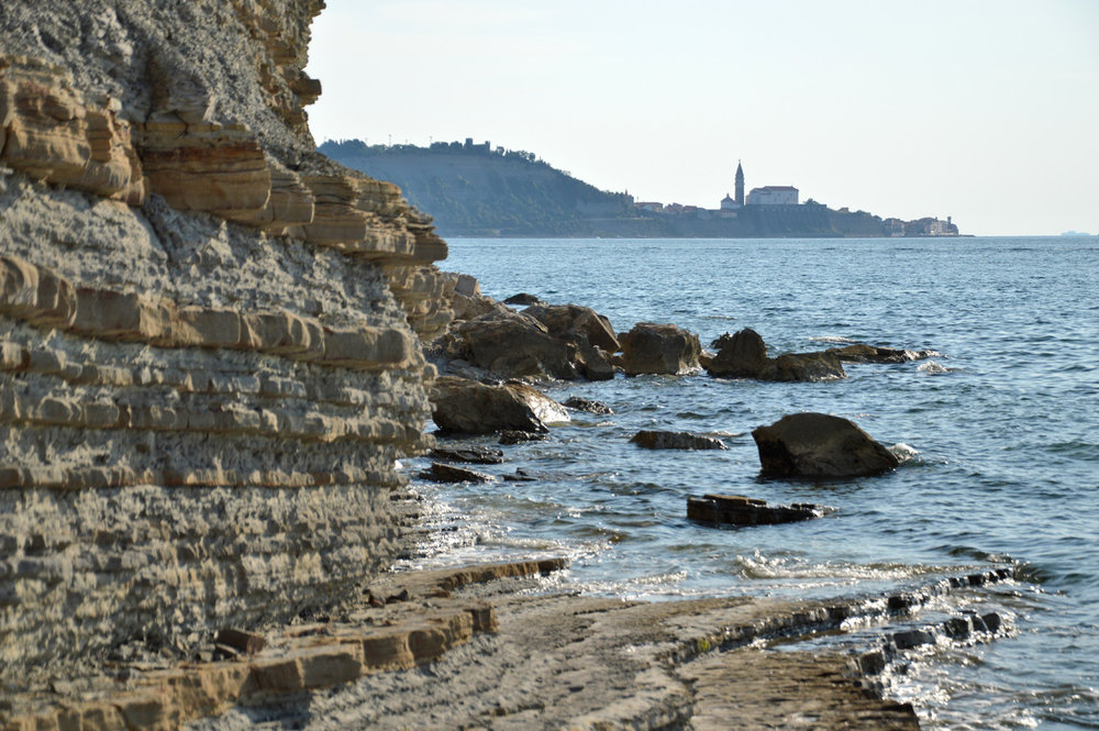 The town of Piran seen in the distance