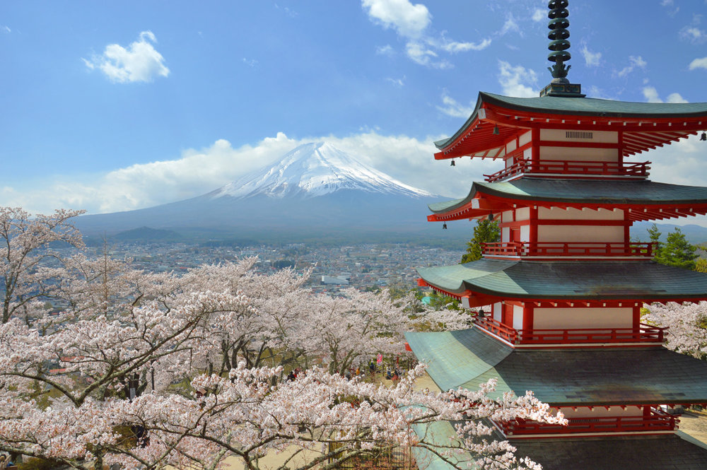 Cherry blossom, Chureito Pagoda and Mount Fuji - what a view!