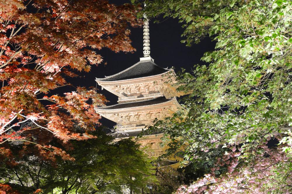 To-Ji Temple in Kyoto