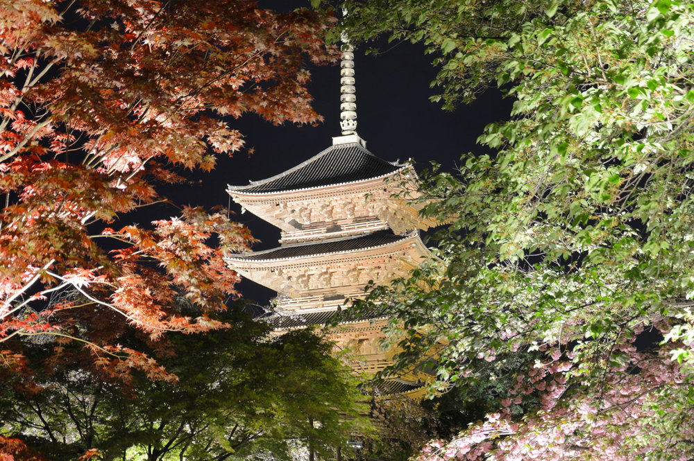 To-Ji Temple in Kyoto     more info
