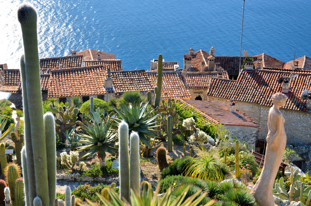 Exotic gardens in Eze