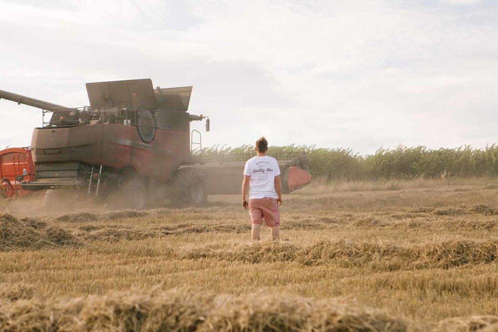 trialling-barley-malt-collection-from-local-farmer.jpg