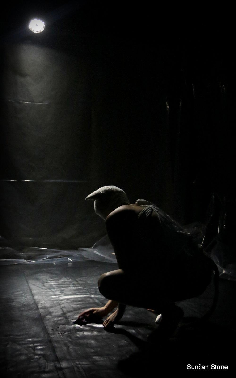 Shades of blood, Pocket Teater Studio, Foto Sunčan Stone (37).JPG
