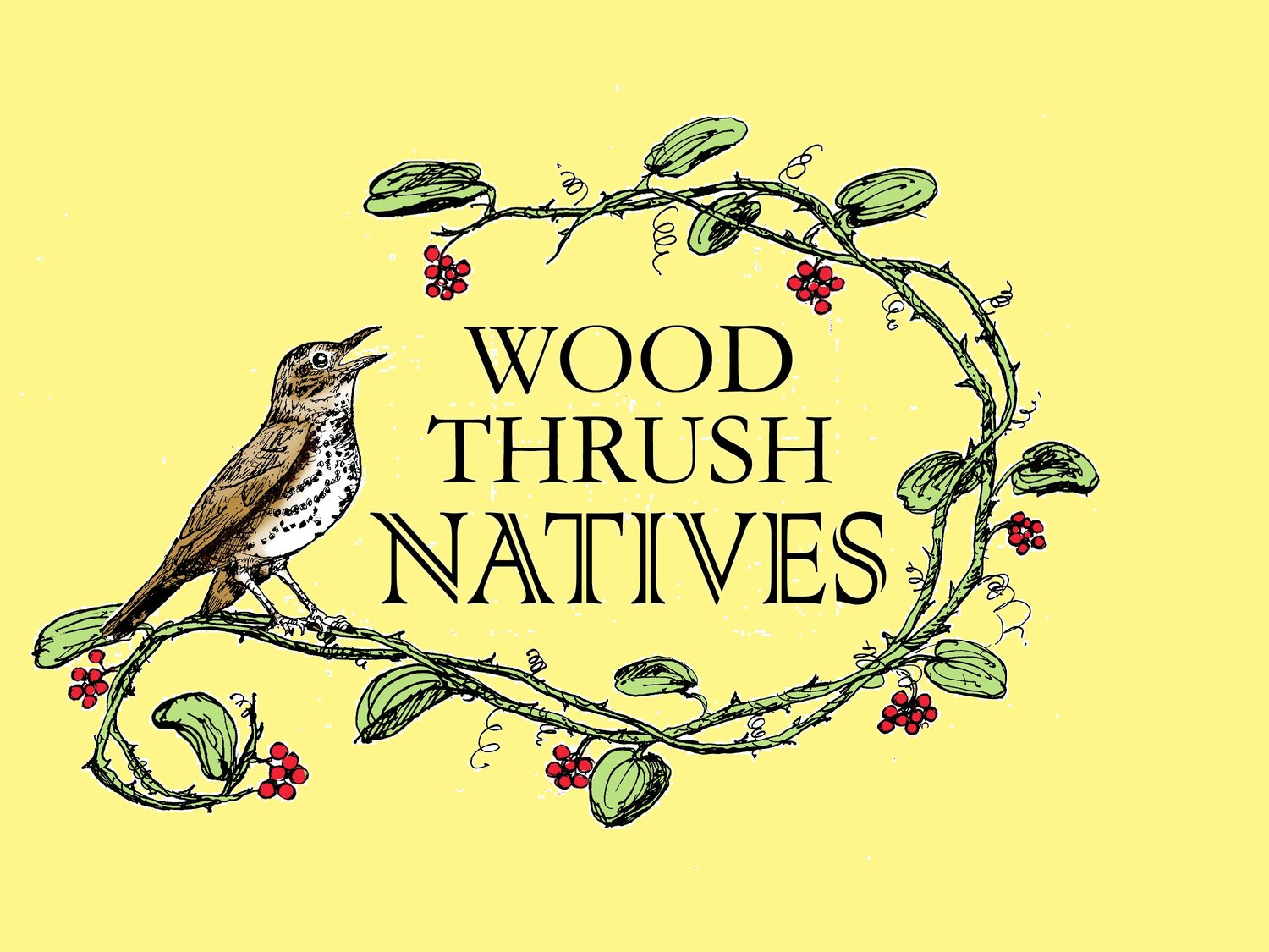 Wood Thrush Native Nursery
