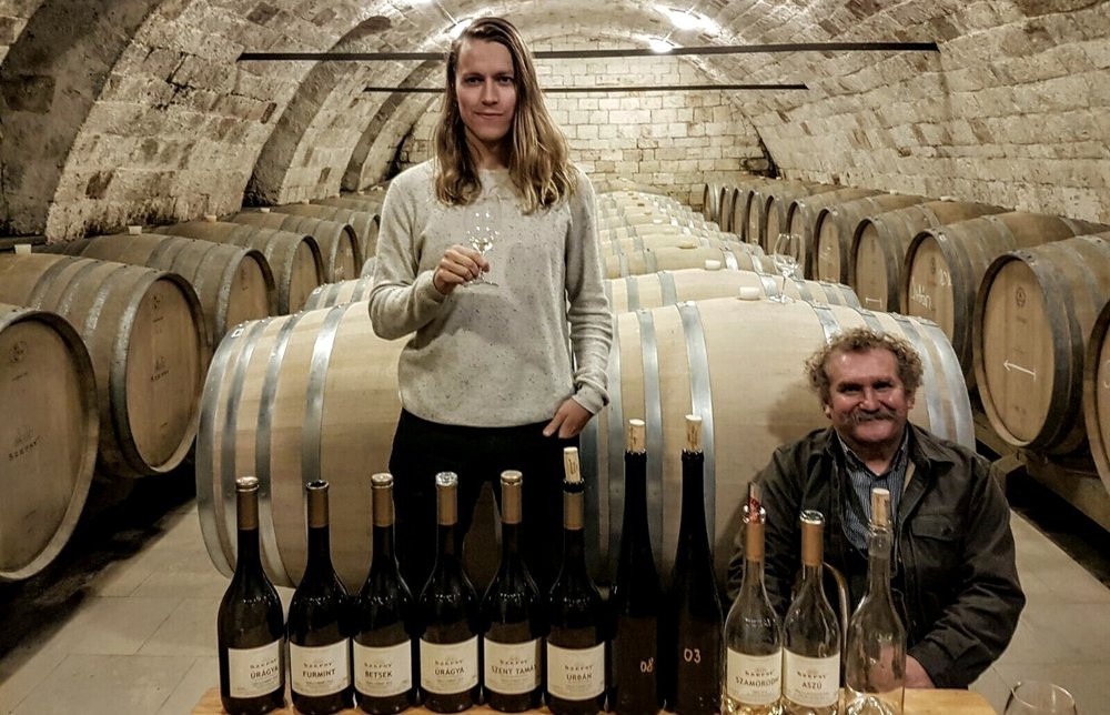 Szepsy cellar and a crazy Furmint line up...
