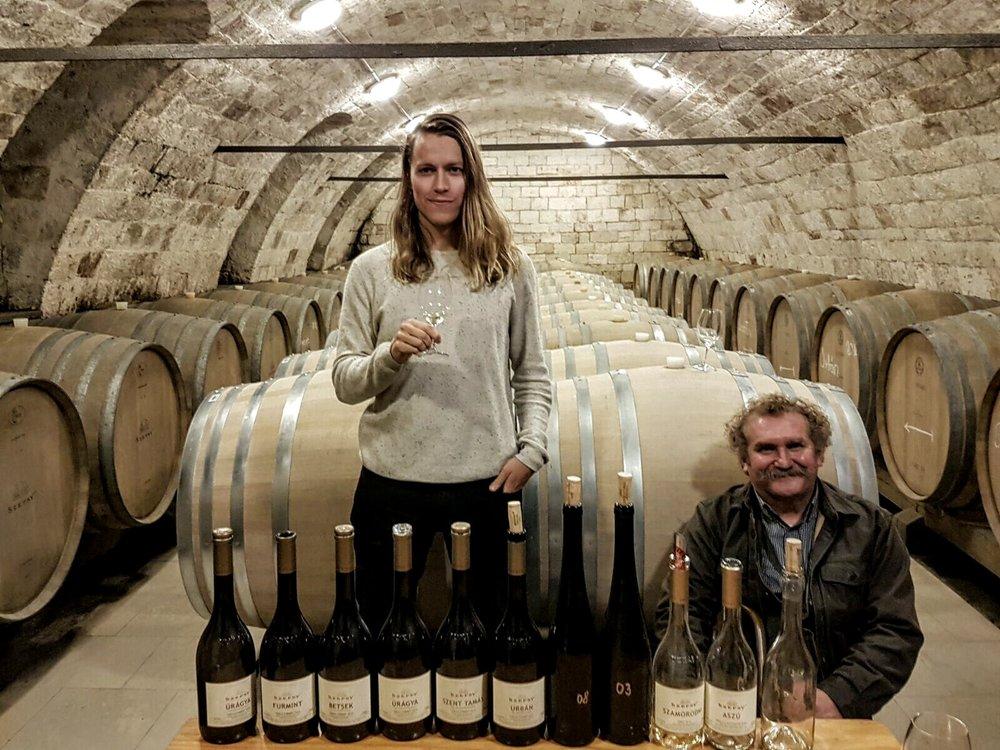Szepsy cellar and a crazy Furmint line up...