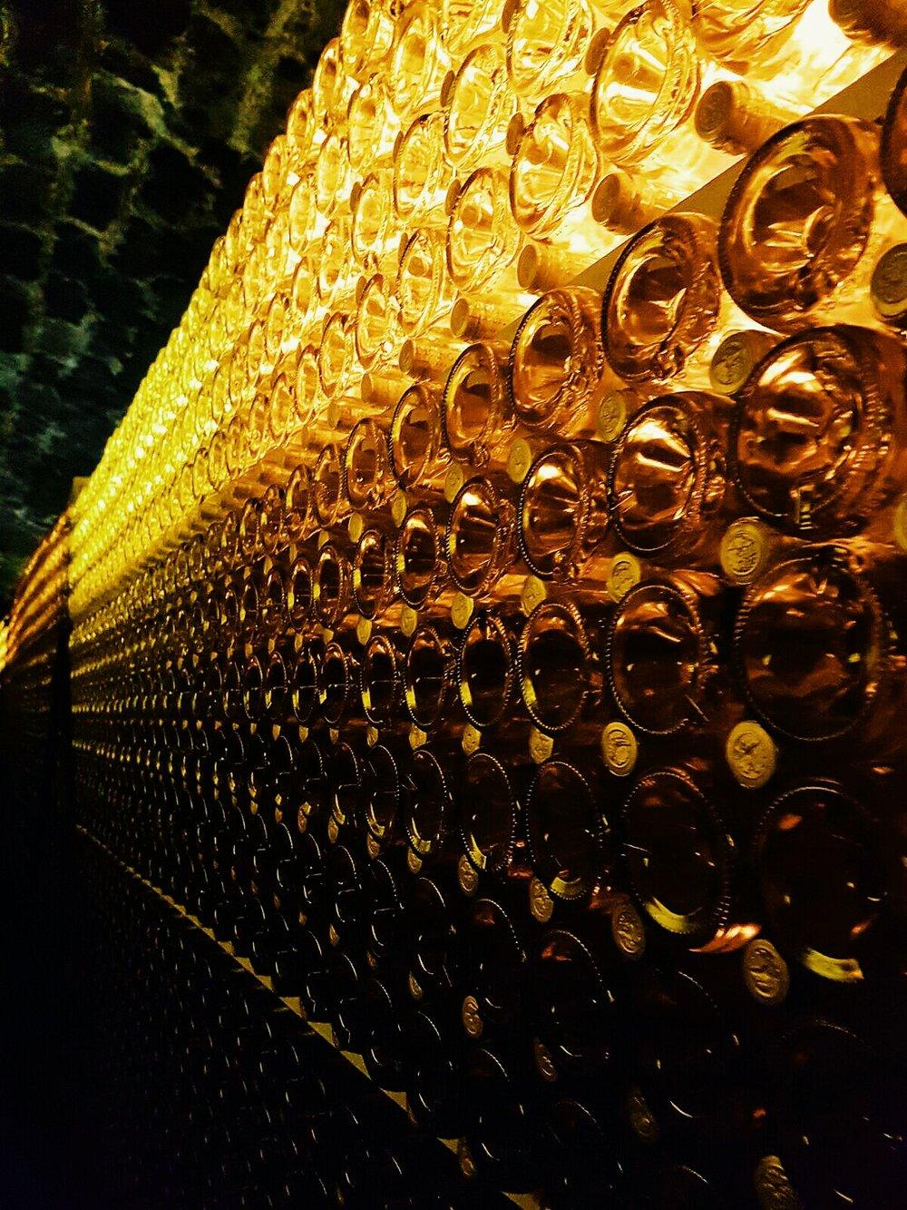 Golden elixir...