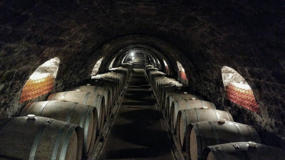 Oremus's EPIC cellar...