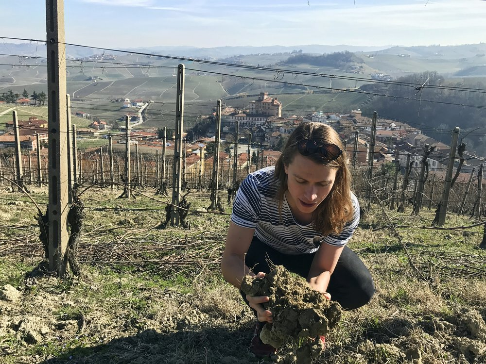 Soil inspection overlooking the town of Barolo...