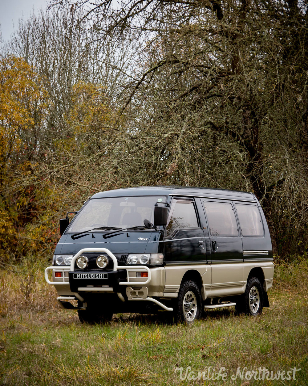 1993MitsubishiDelicaL300ExceedTimothyD-8.jpg