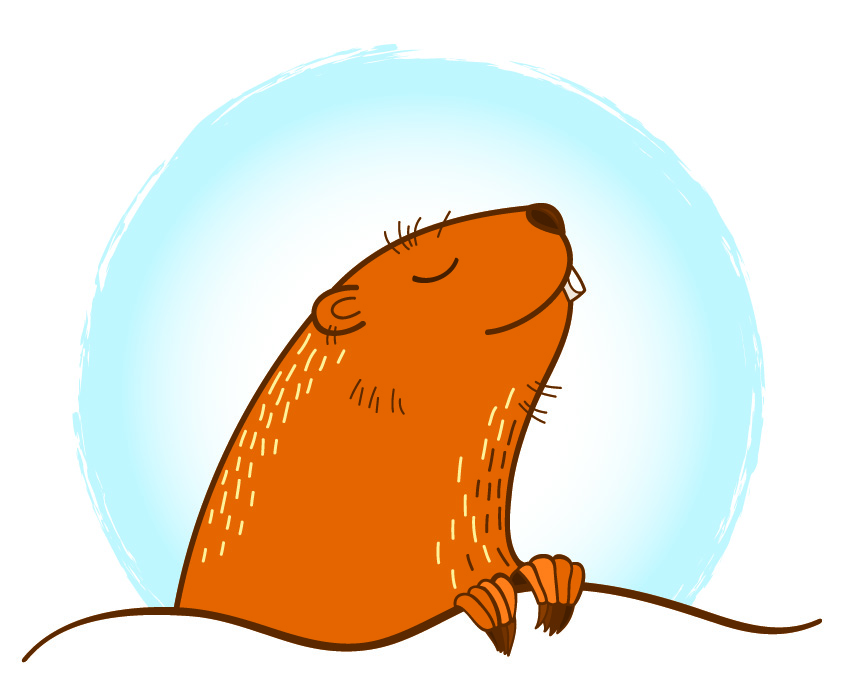 optimistic groundhog.jpg
