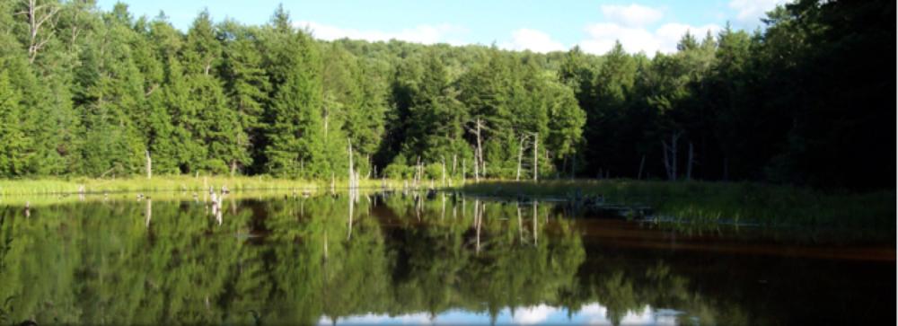 Tanzman Lake Estates