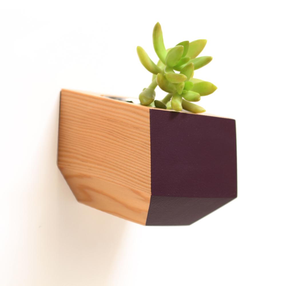 Revolution-DH-Sidecar-Douglas-Fir-and-Eggplant.jpg
