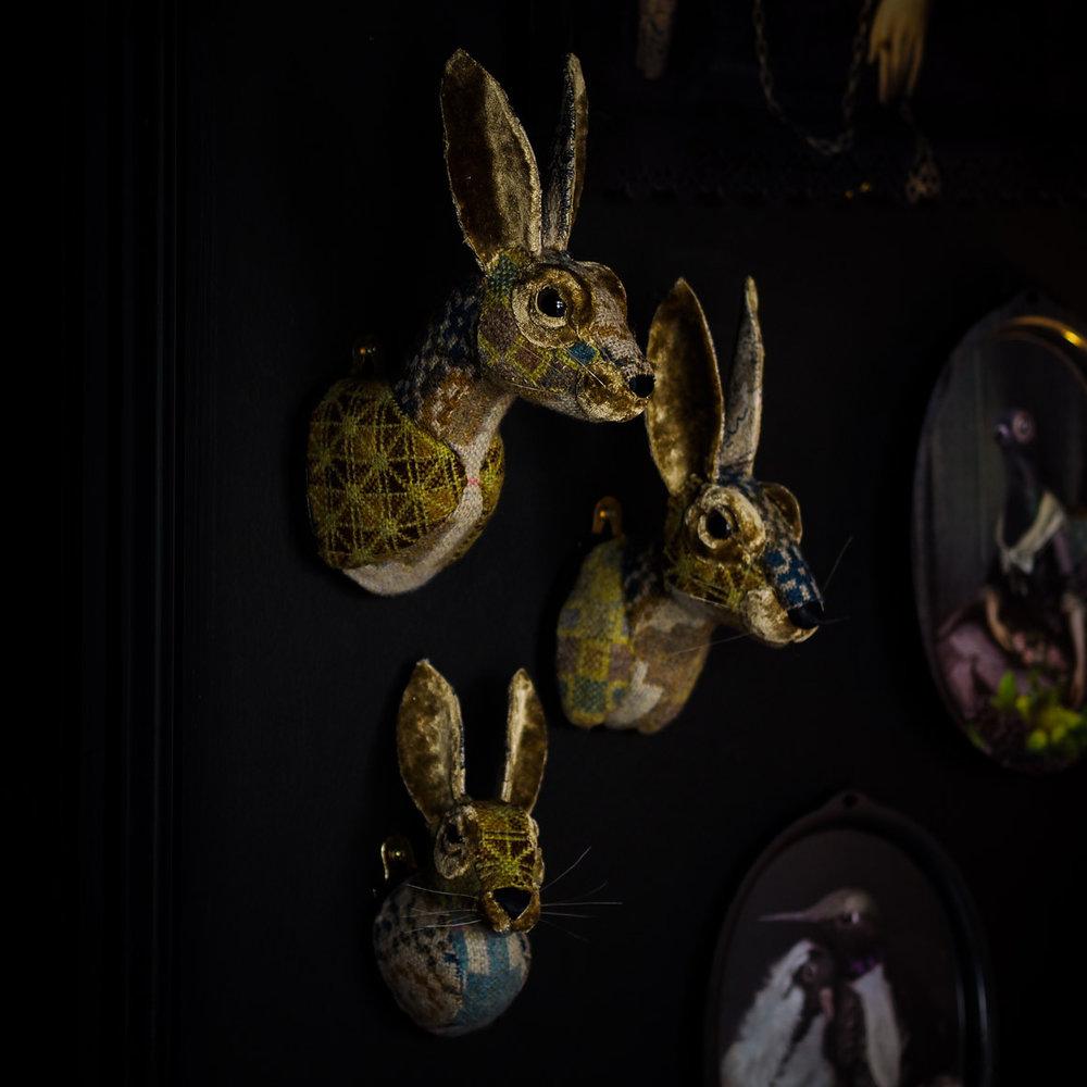 Hare_Family.jpg